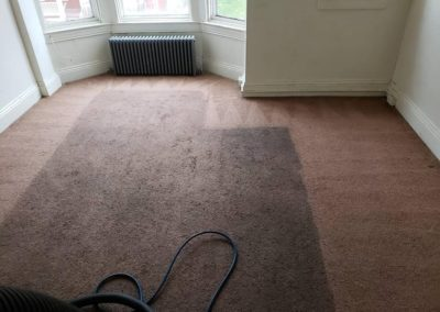 carpet-cleaning2