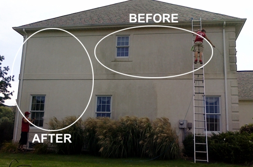 Residential Pressure Washing Company Window Cleaning
